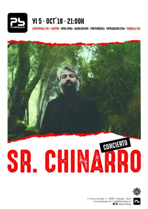 Señor Chinarro Planta Baja Granada