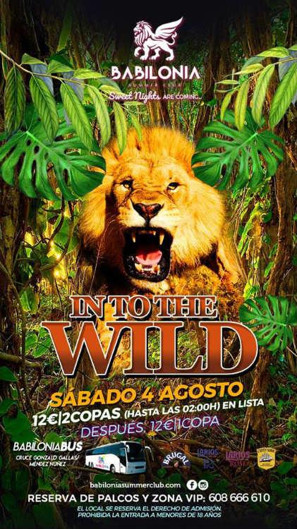 Into The Wild - Babilonia Summer Club (04/08/18)