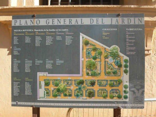 Distribución de especies en el jardin botánico granada