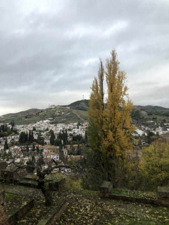 Vistas del Albaicín desde la Alhambra