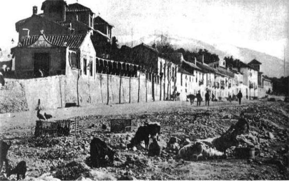Avenida de Cervantes. Granada