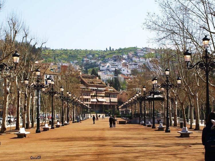 Paseo del Salón Granada