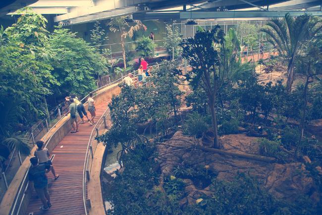 biodomo parque de las ciencias granada