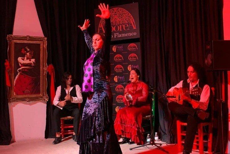Tablao Flamenco La Alborea Granada