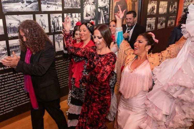 Tablao Flamenco La Solea Granada
